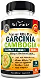 Garcinia Cambogia Pure Extract 1600mg with 960mg