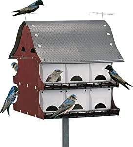 16 Family Purple Martin Barn