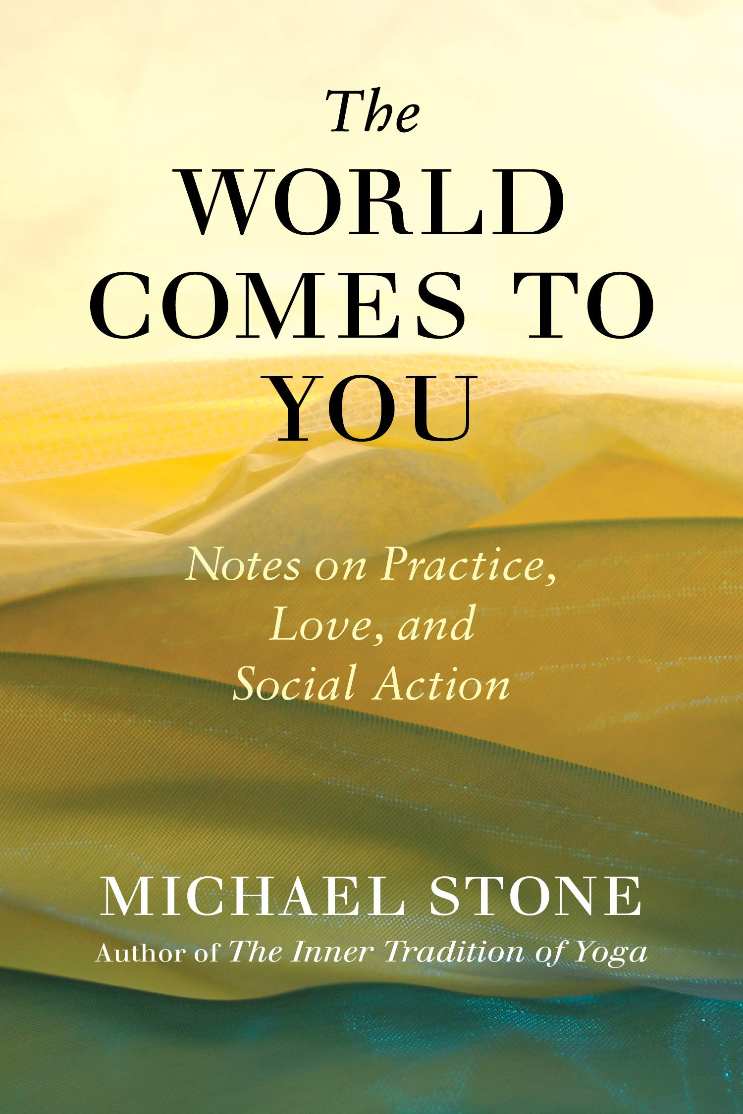 The World Comes to You: Notes on Practice, Love, and Social ...
