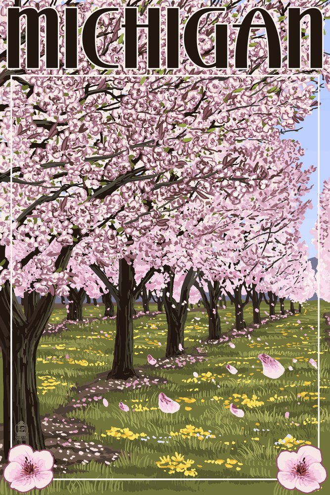 Michigan - Cherry Orchard in Blossom (8oz Whole Bean Small Batch Artisan Coffee - Bold & Strong Medium Dark Roast w/ Artwork) by Lantern Press (Image #4)