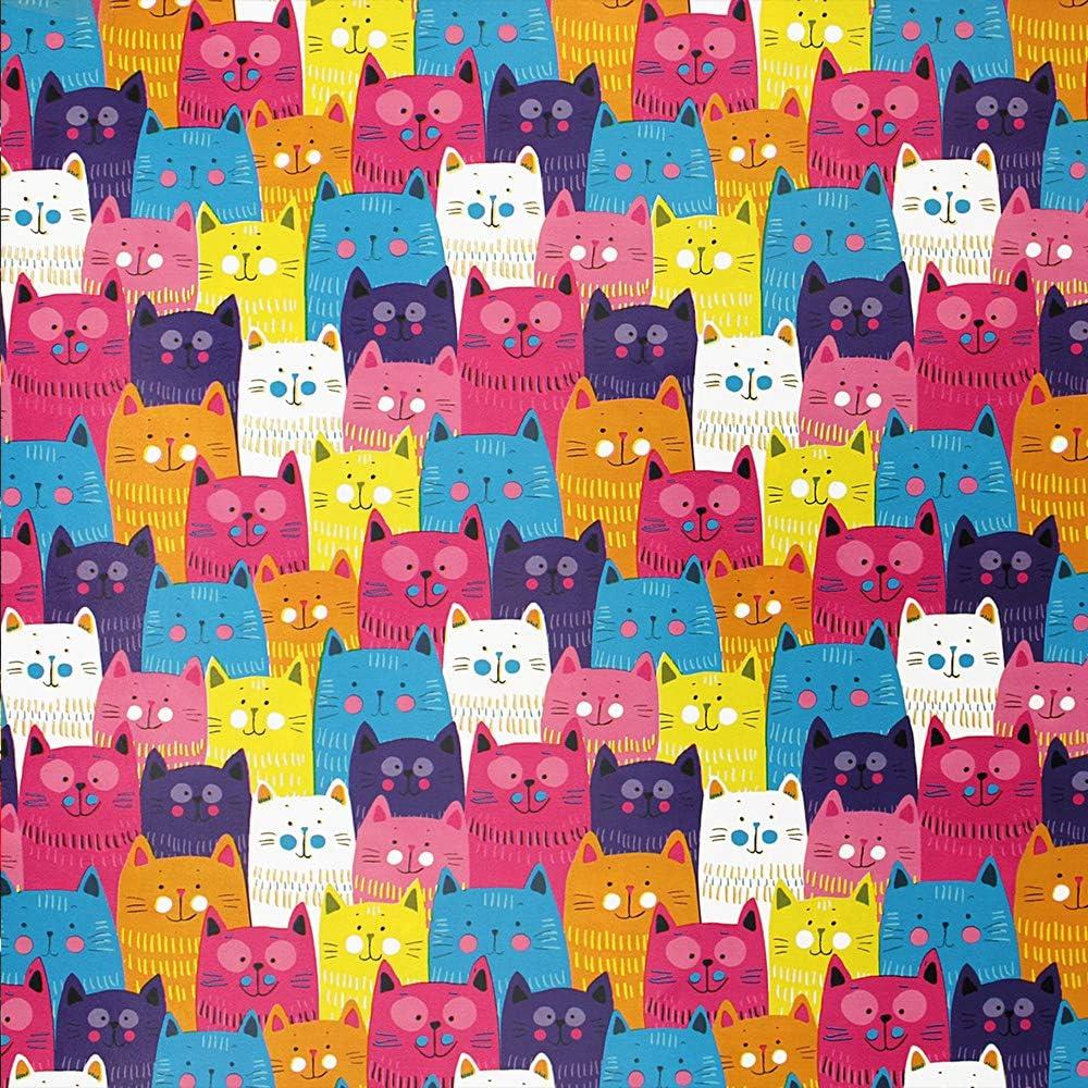 Papier cadeau pour adolescent 70 cm x 2 m Motifs chats