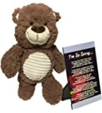"I'm Sorry Gift, Unique Apology Love Poem Photo in 4 x 6 Inch Silver Picture Frame with 14"" Plush Teddy Bear - A Lovely Sympathy Present For Him or Her By Words Matter Gifts (Silver - Poem 1)"