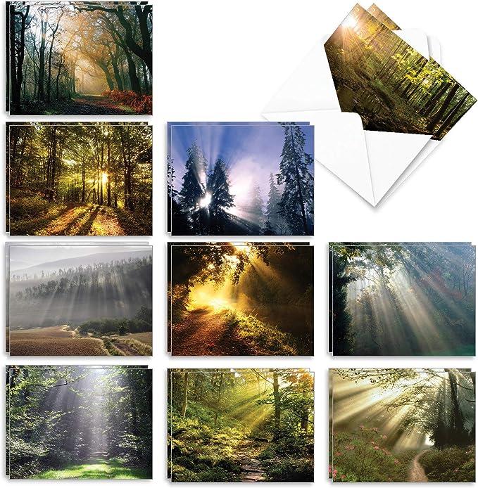 Spring Greeting Cards 5 x 6.5 Set of 5 Spring Cards Nature Notecards New York Notecards Blank Greeting Cards Nature Greeting Cards