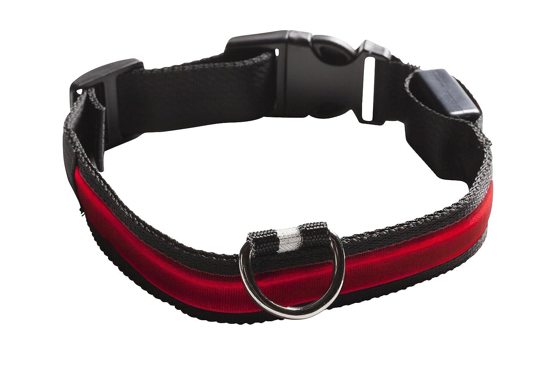 Eyenimal NGCOLLUM009 Pet Safety Light Collar, Large, Blue