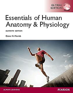 Amazon western civilization alternate volume since 1300 ebook essentials of human anatomy physiology global edition fandeluxe Choice Image
