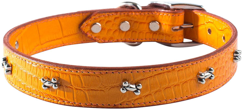 OmniPet Faux Crocodile Signature Leather Pet Collar with Bone Ornaments, orange, 1 by 26