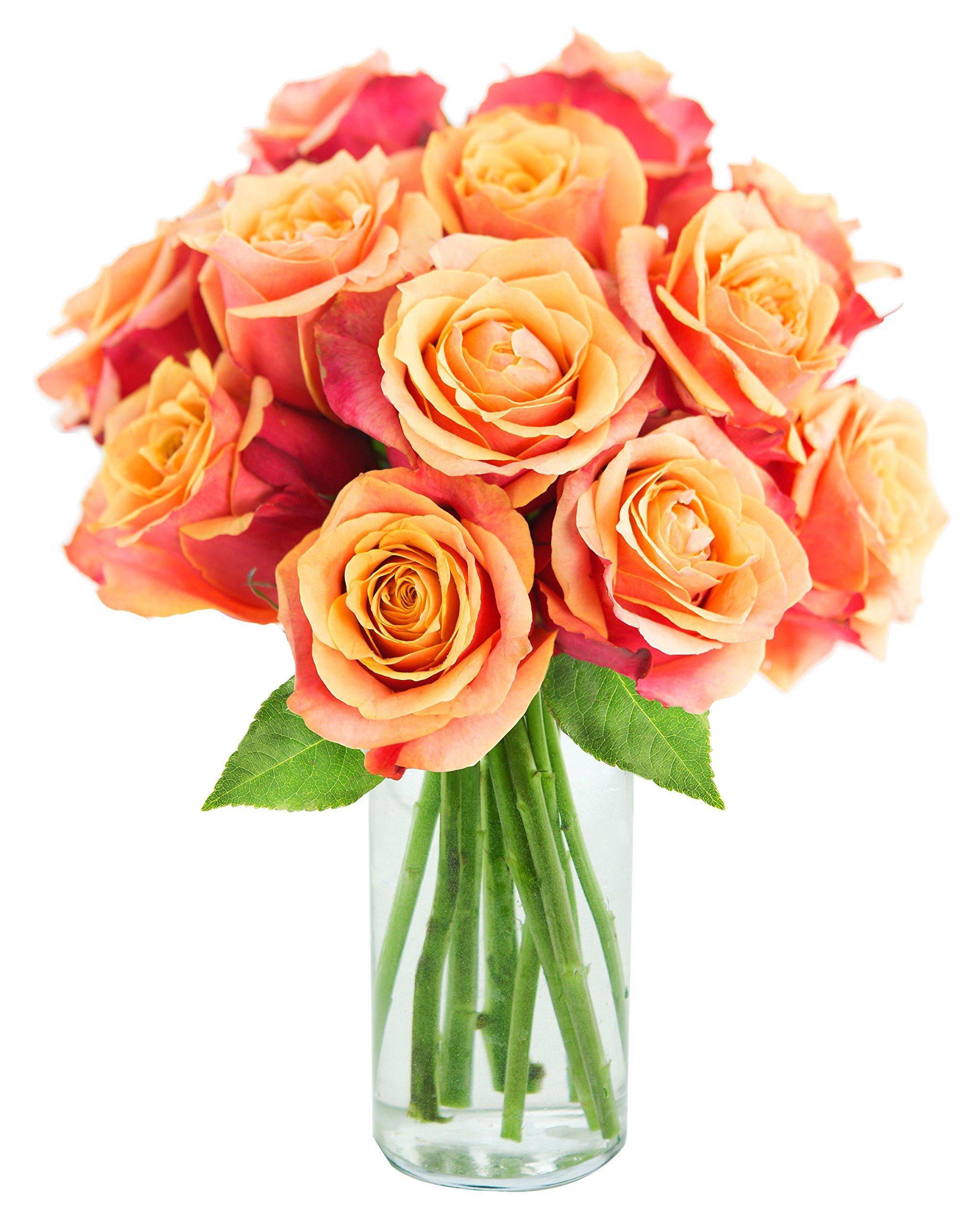 KaBloom Bouquet of 12 Fresh Cut Orange Roses (Long Stemmed) with Vase