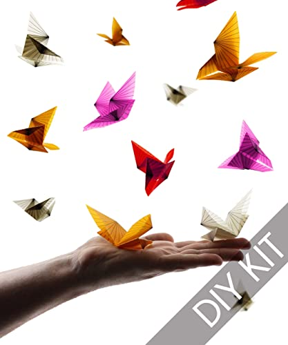 Amazon Com Origami Butterfly Kit Origami Paper With Instructions
