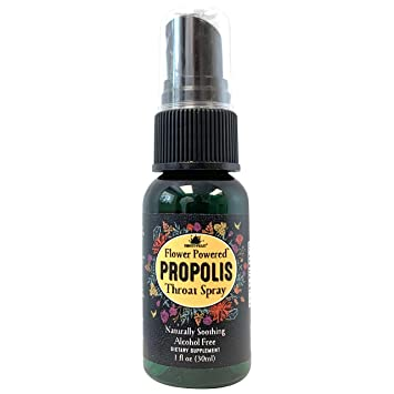 Honey Feast - Bee Propolis Throat Spray | 95% Pure Non Alcoholic Throat  Relief (1oz) Natural | Dry