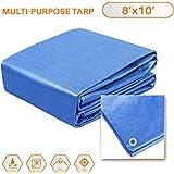 Sunshades Depot 8 x 10 Feet General Multi-Purpose 5 Mil Waterproof Blue Poly Tarp