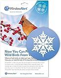 WindowAlert Snowflake Decals