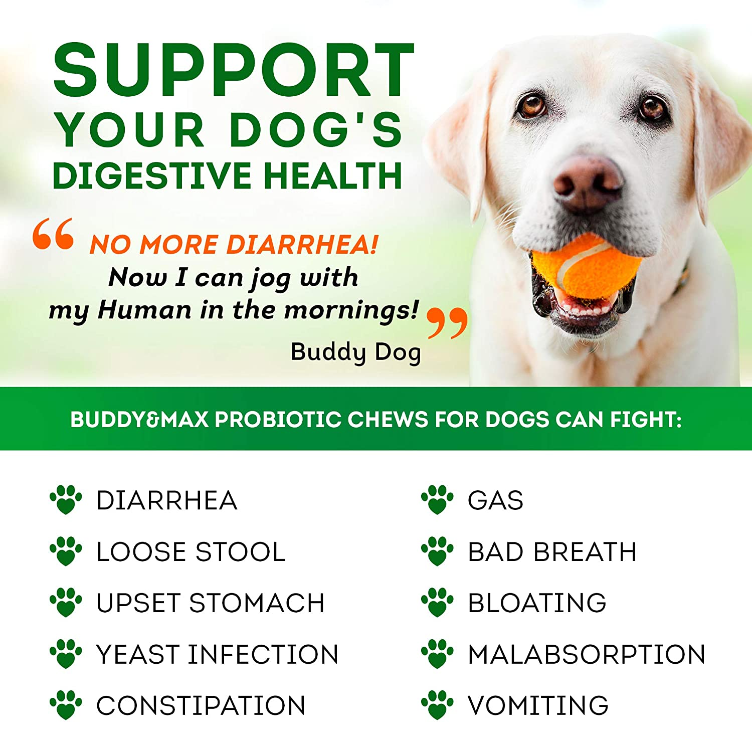 Probiotics for Dogs - Chewable Dog Digestive Enzymes - Dog Diarrhea,  Stomach, Vomit, Gas, Allergy Relief, Weight Support - Contains Prebiotics -  Dog