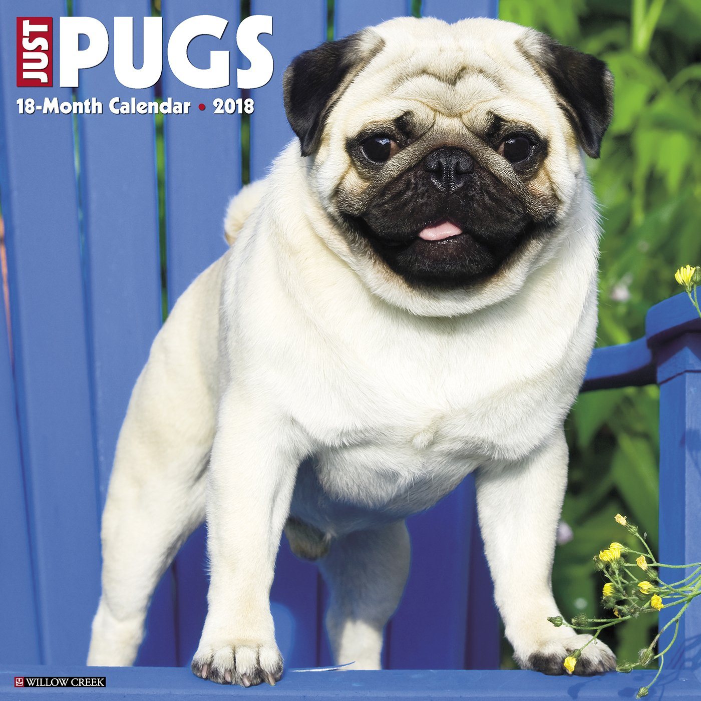 Download Just Pugs 2018 Calendar pdf epub