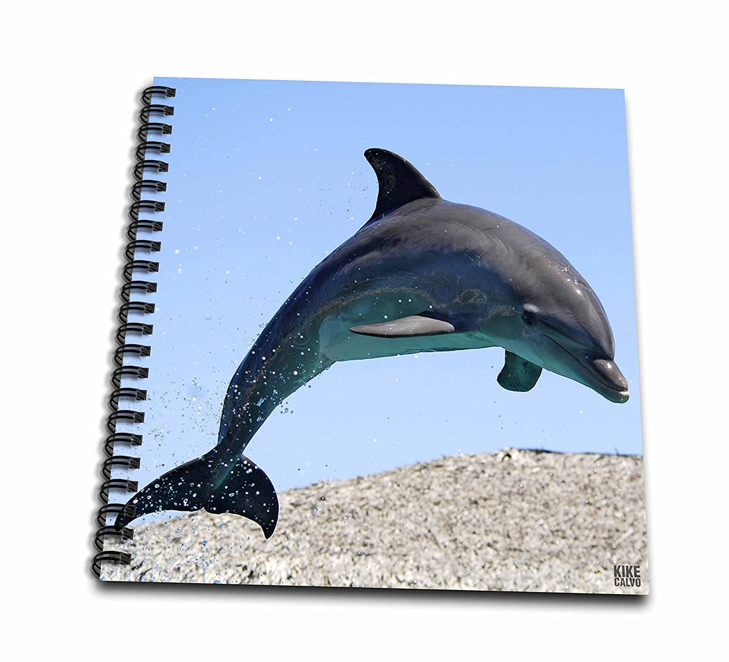 8 by 8-Inch 3dRose db/_10697/_1 Bottlenose Dolphin-Drawing Book
