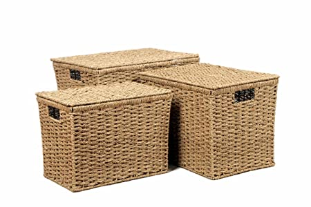6067b7867736 Set Of 3 Seagrass Lidded Chest Trunk Storage Baskets Office   Filing ...