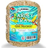 Vet Recommended - Barley Straw for Fish Ponds - Certified Organic - Safe & Natural Pond Cleaner Made in USA (16oz)