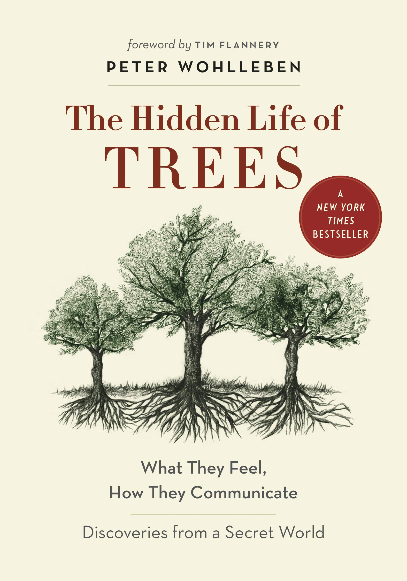 Image result for the hidden life of trees