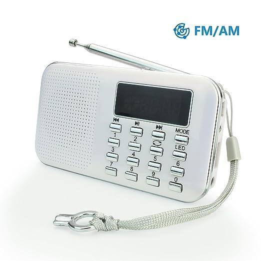 55 opinioni per PRUNUS Mini radio AM/FM ad altoparlante singolo. Lettore musicale MP3, Supporto