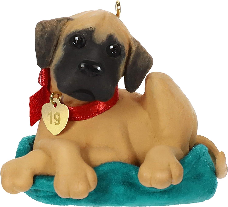 Hallmark Keepsake Christmas Ornament 2019 Year Dated Dog, Dane Puppy Love