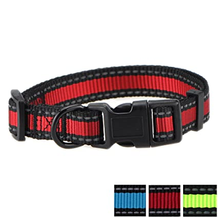 Mile High Life Dog Collar | Reflective 3M Stripe with Nylon Band | RED Blue  Green