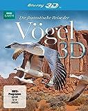 Die fantastische Reise der Vögel  (inkl. 2D-Version) [3D Blu-ray]