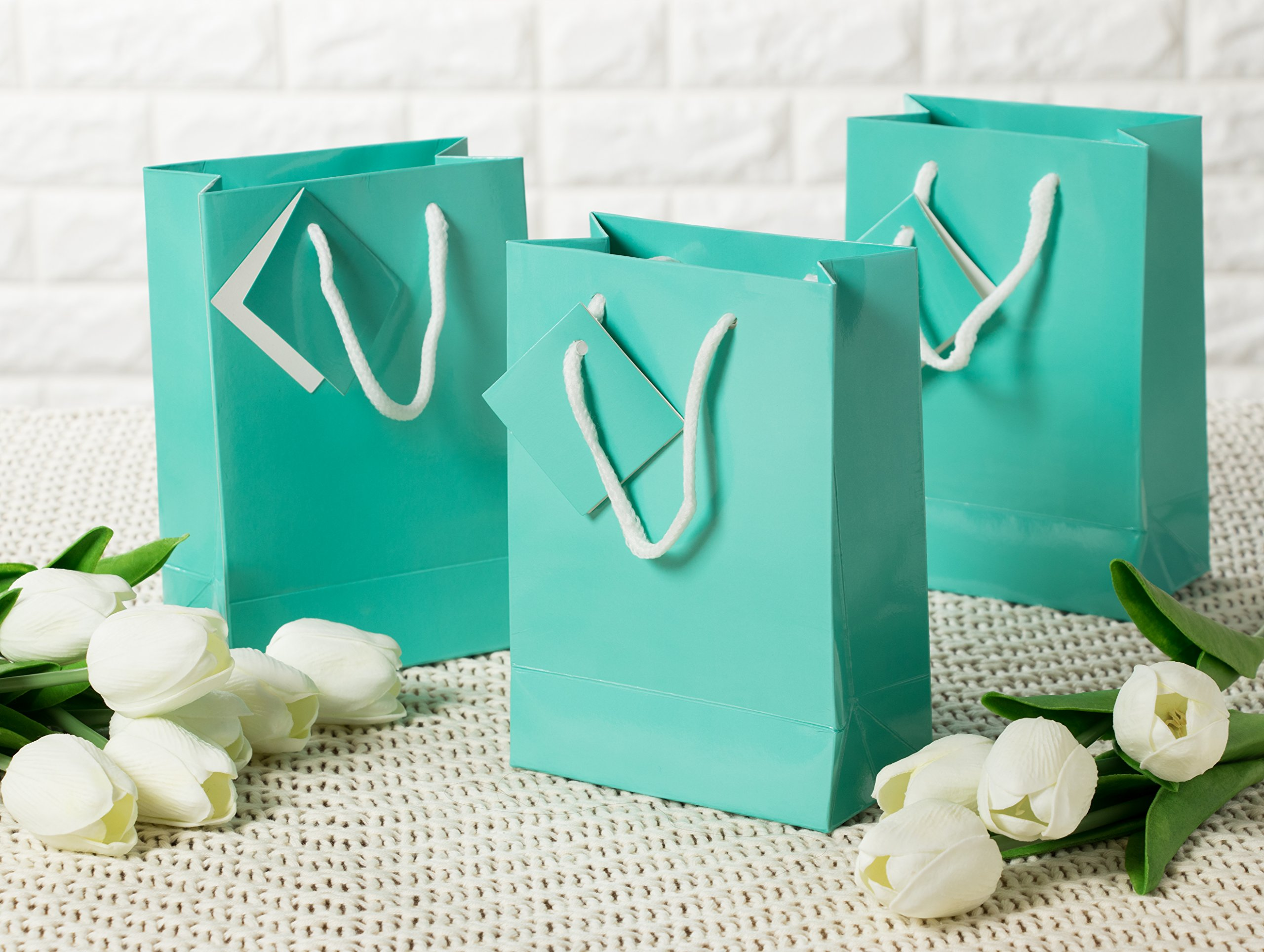 Paper Gift Bag - 20-Pack Small Party Favor Bags, Mini Paper Bags, Tissue Paper Included, Glossy Finish Teal Color, 4.75 x 6.75 x 2.5 inches by Blue Panda (Image #3)