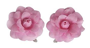 Amazon 1 pair mini rose flower hair clip pink beauty 1 pair mini rose flower hair clip pink mightylinksfo