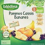 Blédina 100% Fruits Pommes Cassis Bananes en Coupelle dès 8 Mois 4x100g - Lot de 6
