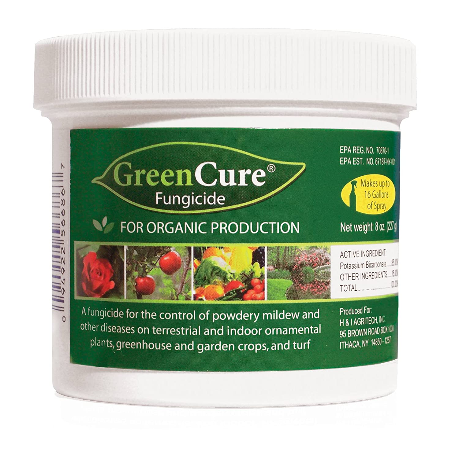 Amazon.com : GreenCure Organic Gardening Fungicide for Vegetables ...