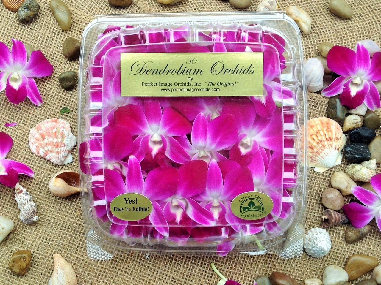 Edible Orchids - 50 Count (Pack of 4) by California Specialty Farms