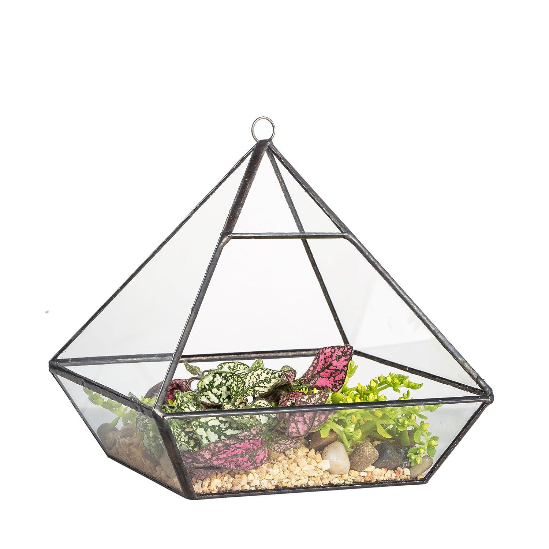 Suspension en métal vertébrale géométrique Terrarium en verre de table Pot Jardinière Succulente Fougère Mousse 15cm Zhongpengcheng