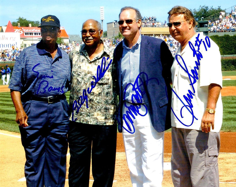 Ernie Banks, Williams, Santo & Sandberg Chicago Cubs legends 8 x 10 photo