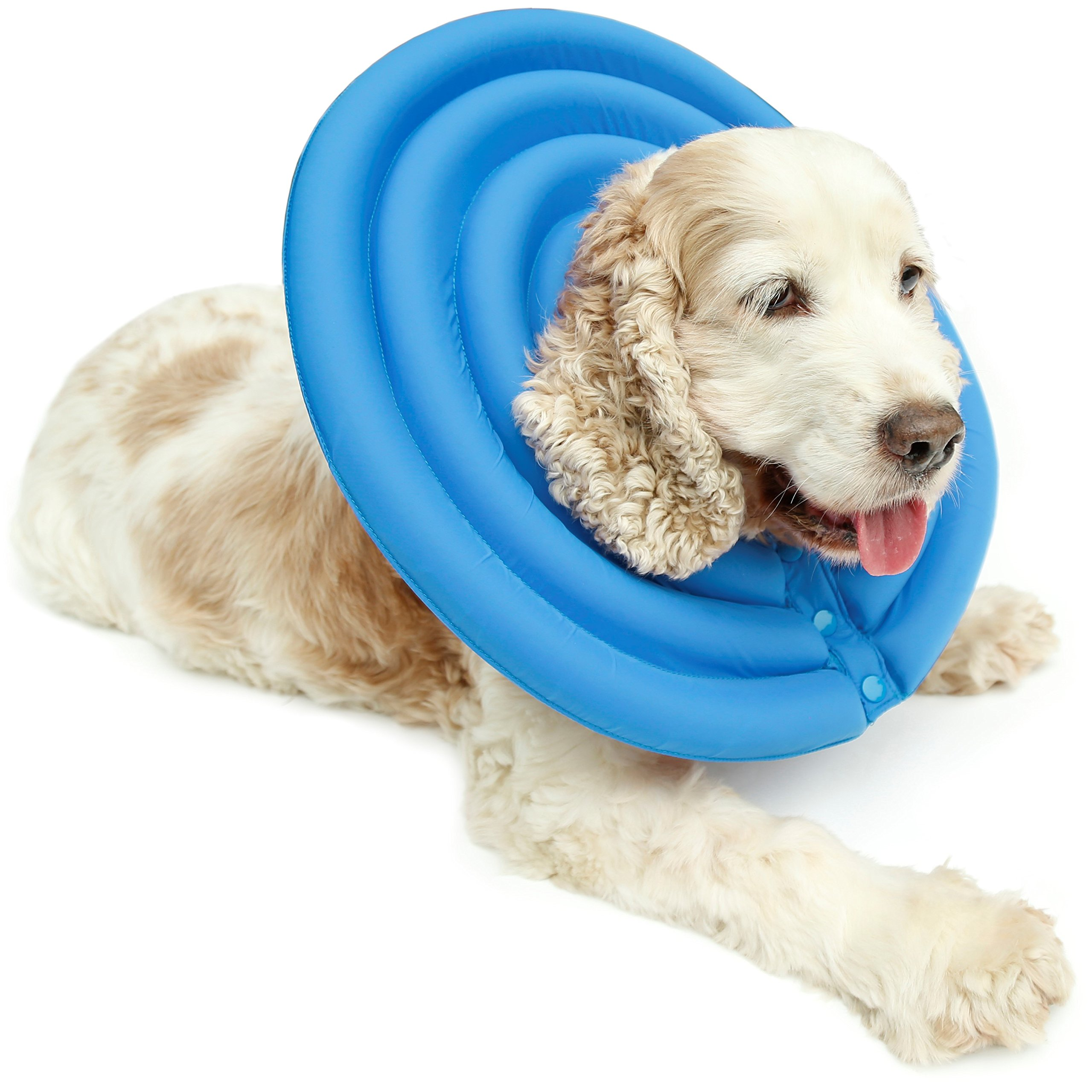 UsefulThingy Dog Recovery Collar - Soft Comfy Cone E-Collar After Surgery, Anti-Bite/Lick - for Cats Too, Quicker Healing - 4 Sizes, 2 Colors (M, Light Blue) by UsefulThingy