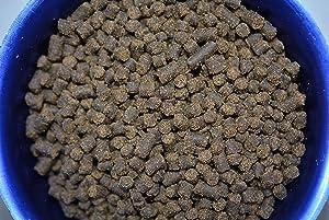 AQUATICBLENDEDFOODS ABF Gourmet Axolotl Soft Food PELLETS 4.0mm - ABF5
