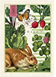 Michel Design Works Garden Bunny Cotton Kitchen Towel, Multicolor