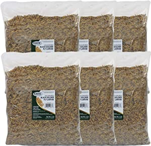 Exotic Nutrition Bulk Dried Black Soldier Fly Larvae - High-Calcium Insect Treat - Chickens, Wild Birds, Hedgehogs, Bluebirds, Reptiles, Sugar Gliders, Opossums, Skunks, Lizards, Bearded Dragon, Fish