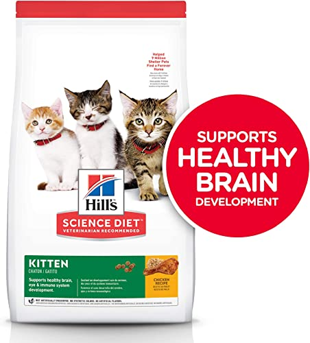 Hill s Science Diet Dry Cat Food, Kitten, Chicken Recipe