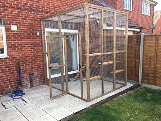 4 alambres Catio/Casa Cat Leanto 8 ft x 8 ft x 8 ft con estantes ...