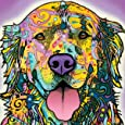 Dean Russo Happy Dog Close Up Modern Animal Decorative Art Poster Print, Unframed 12x12