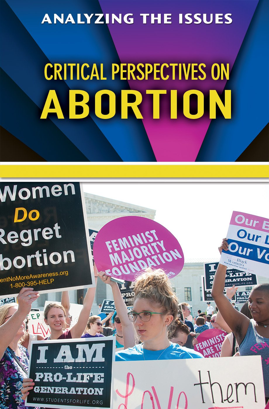 Download Critical Perspectives on Abortion (Analyzing the Issues) PDF