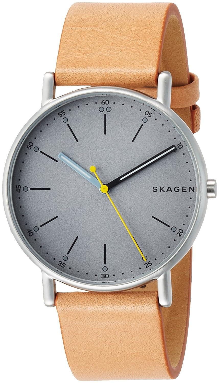 [スカーゲン]SKAGEN 腕時計 SIGNATUR SKW6373 メンズ 【正規輸入品】 B0716D2Q4H