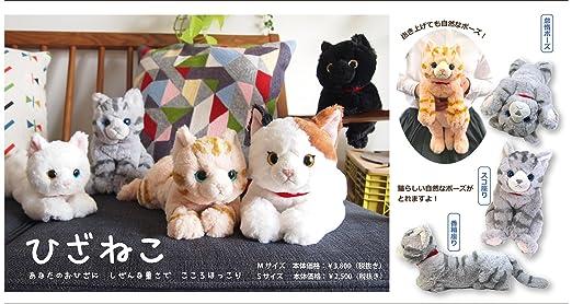 Amazon Com Sunlemon Plush Doll Hiza Neko Exotic Shorthair Cream