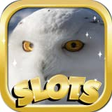 Video Slots For Fun : Arctic Davey Edition - Strike It Rich And Claim Your Fortune!