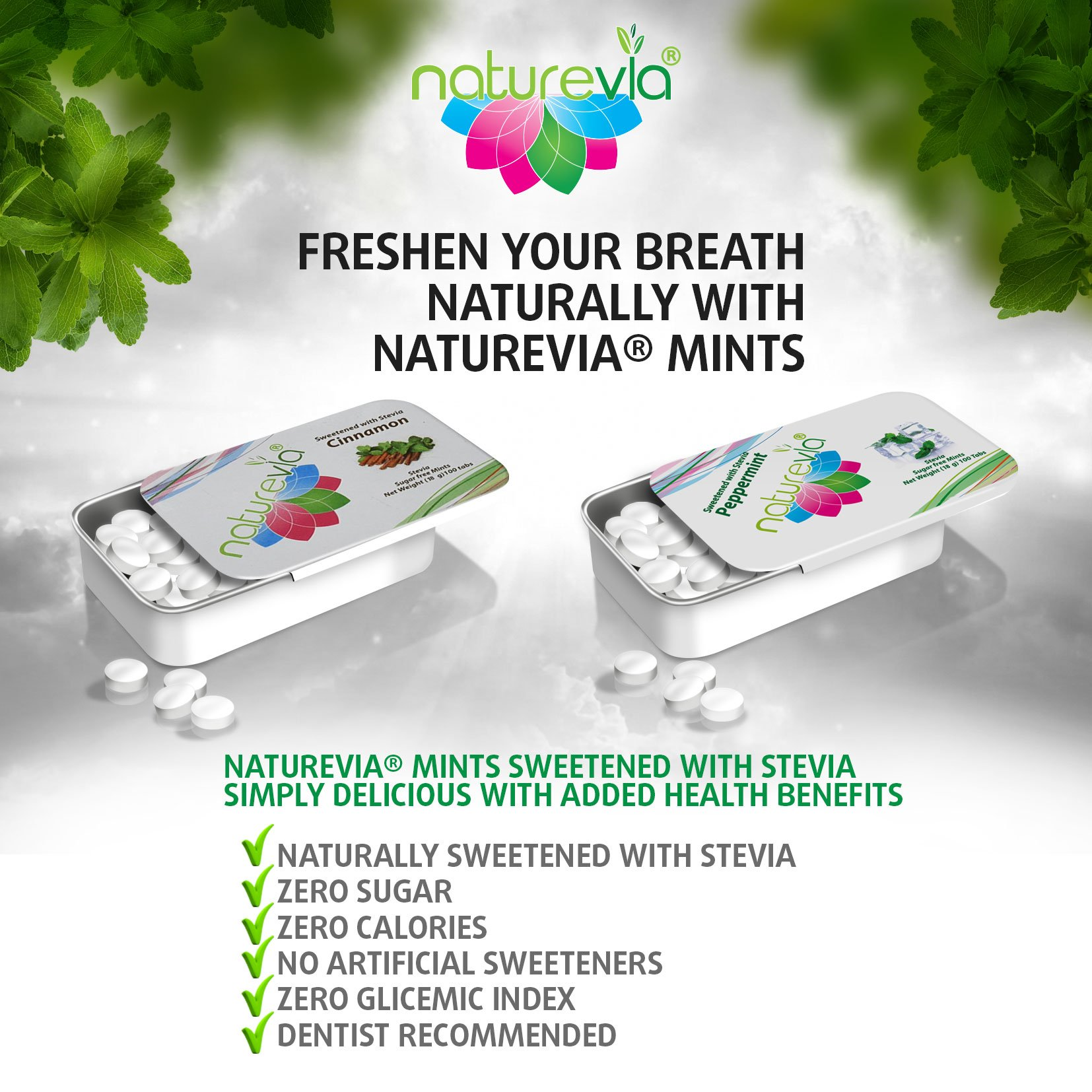Sugar-Free Mints - Cinnamon Flavor (12 PACK-100 tabs 18 g): Mints Naturally Sweetened with Stevia, Free of: Sugar, Carbs, Calories, Glycemic Index, Aspartame ; Dentist Recommended by Naturevia (Image #4)