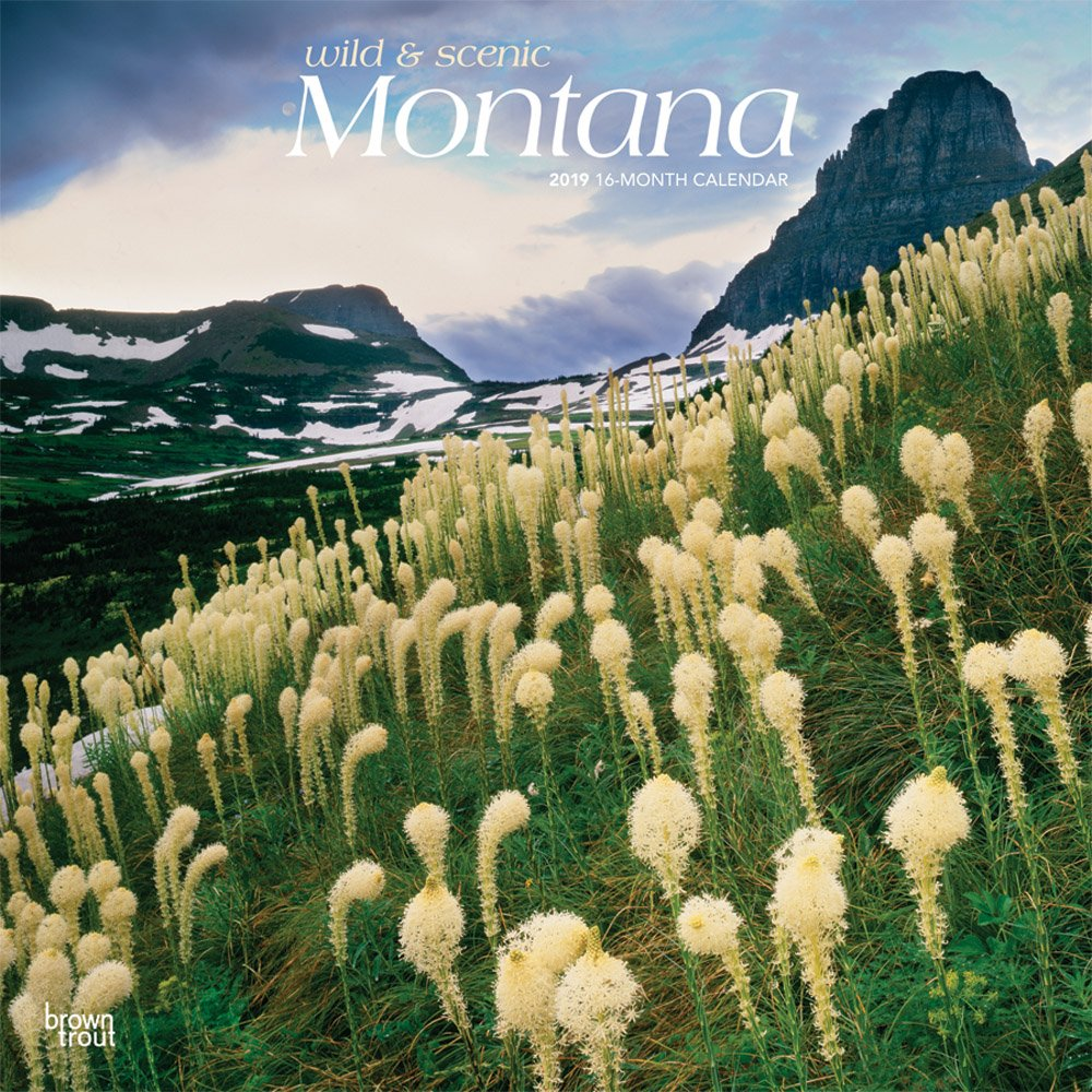 Montana, Wild & Scenic 2019 12 x 12 Inch Monthly Square Wall Calendar, USA United States of America Rocky Mountains State Nature (English, Spanish and French Edition)