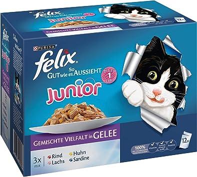 Felix Katzenfutter Junior Gemischte Vielfalt 6er Pack 6 X 12 X