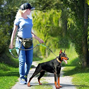 Hands-Free Dog Leashes