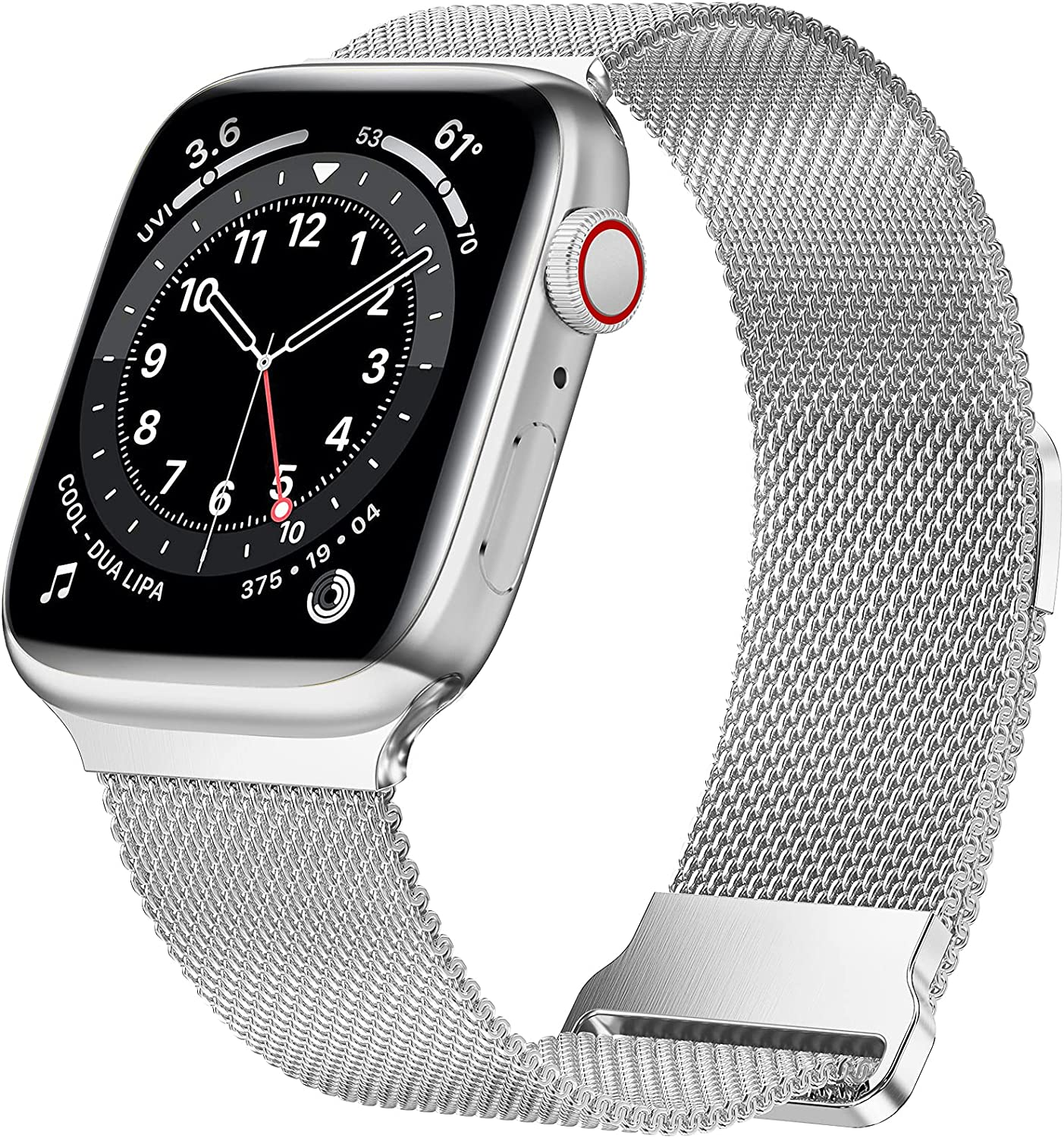 JuQBanke Magnetic Band Compatible with Apple Watch 38mm 40mm, Stainless Steel Mesh Milanese Strap with Adjustable Loop, Metal Wristband for iWatch SE Series 6 5 4 3 2 1 for Women Men, Silver