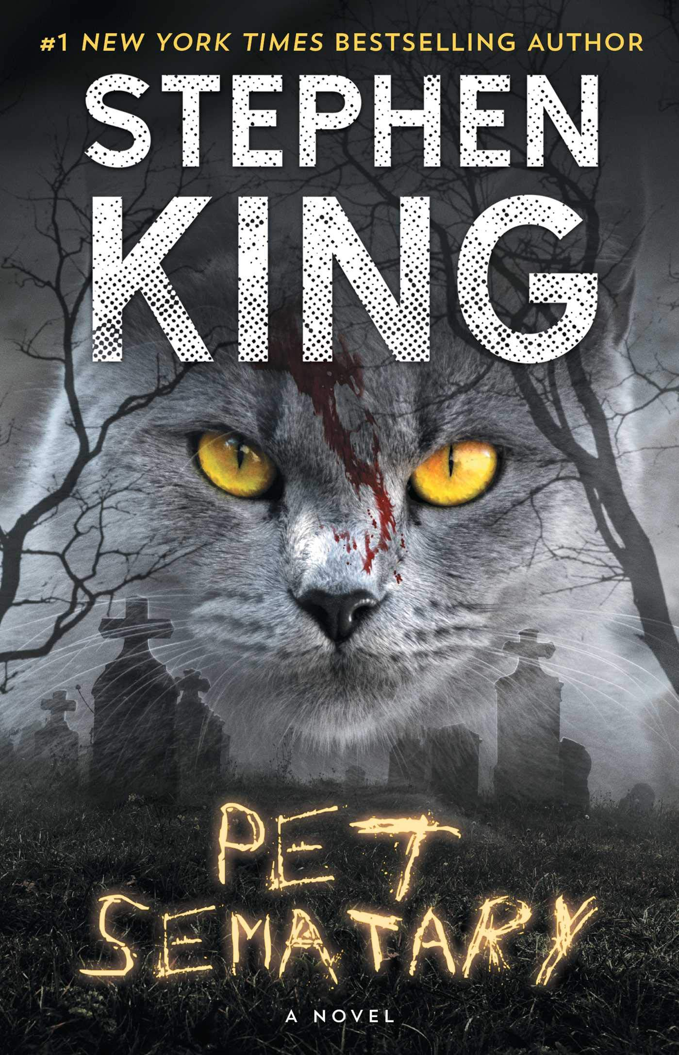 Image result for pet sematary book