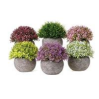 Deals on 6-Pack T4U Artificial Plastic Plants with Pots Mini Size